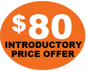 $80 Introductory Price Offer